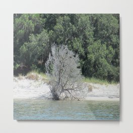 The Skeleton Tree on the Beach Metal Print