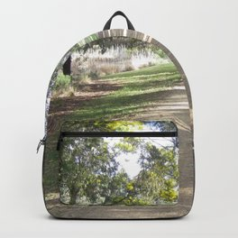 Path By The Lake Backpack
