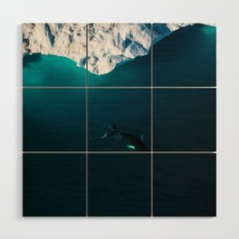 Lone Humpack Whale with Iceberg - Wildlife aerial Wood Wall Art