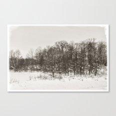 Winter Landscape II Canvas Print