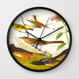 Chestnut-coloured Finch, Black-headed Siskin, Black crown Bunting, Arctic Ground Finch Wall Clock