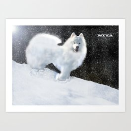 "Samoyed Portrait ""Snowy Night"" Niya Art Print"