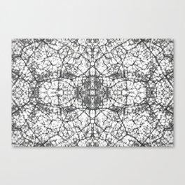 Symetry I Canvas Print