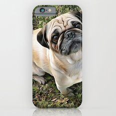 Two Cute Pugs . . .  We are Gorgeous and we Know It! Slim Case iPhone 6s