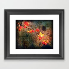 Fields Of Red Berries In The Evening Framed Art Print