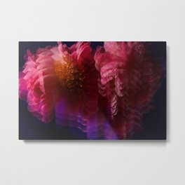 Peonies moving through Time and Space Metal Print