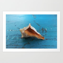 Secrets of the Ocean Art Print