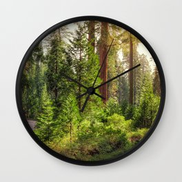 Images California USA Kings Canyon National Park Nature Spruce Parks forest Trees park Forests Wall Clock