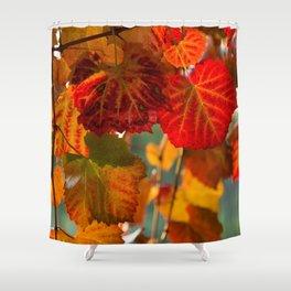 Autumn leaves 1 Shower Curtain