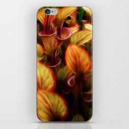 Pitcher iPhone Skin