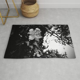 The fading afternoon flower Rug