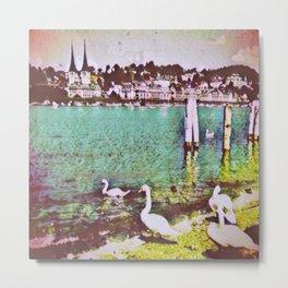 Swiss Swans VII Metal Print