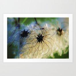 Angel Seeds Art Print