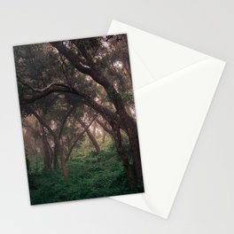 The Lost Forest Stationery Cards