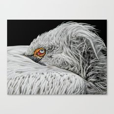 I see YOU! Canvas Print