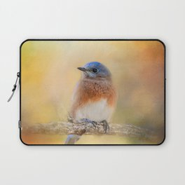 Autumn's Treasure Laptop Sleeve