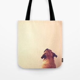 Pug staring up the wall Tote Bag