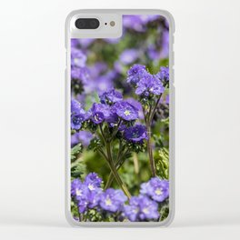 Purple Wildflowers Anza Borrego Clear iPhone Case