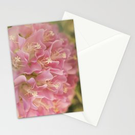Tropical Hydrangea Stationery Cards