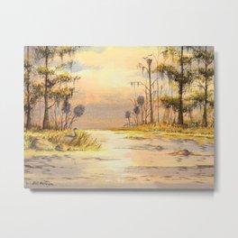 Southern States Sunrise Metal Print