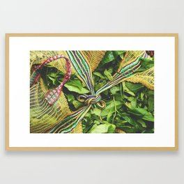 Freshly Picked Tea  Framed Art Print