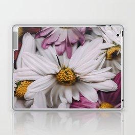 Solo Laptop & iPad Skin