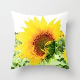 Sunflower 18 Throw Pillow