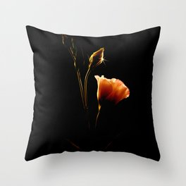 From Shadows To Light Throw Pillow