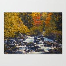 Autumn River II Canvas Print