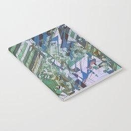 RIEL FT Notebook