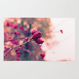 Berrys in the November rain Rug