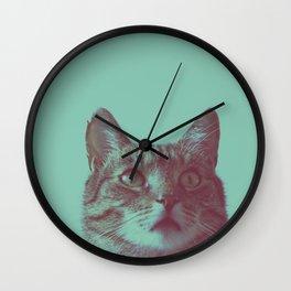 Staring cat Wall Clock
