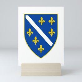 Coat of arms of Bosnia and Herzegovina Mini Art Print