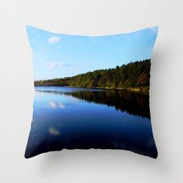 Vivid Landscape  Throw Pillow