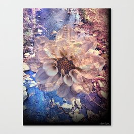 Everbloom Canvas Print