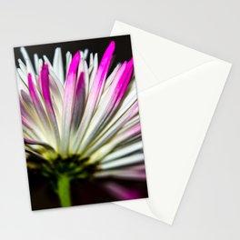 Chrysanthemum Stationery Cards