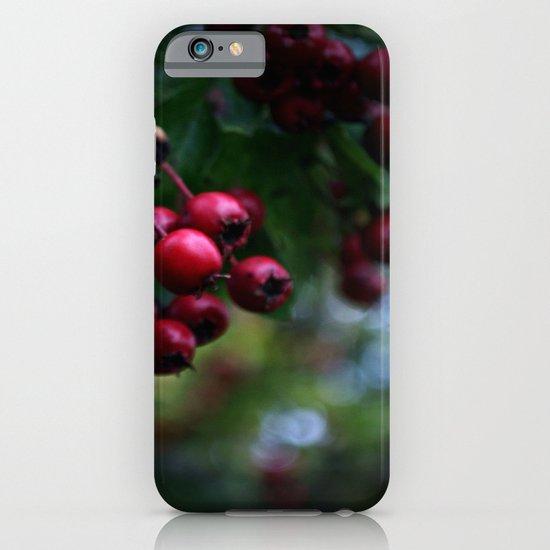 Pyracantha iPhone & iPod Case