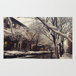 Photo of the beautiful Brooklyn Heights covered in icy snow Rug