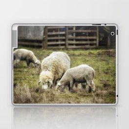 The Farmyard Laptop & iPad Skin