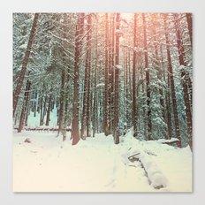 snow forest sun Canvas Print