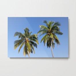 Maldivian Palms Metal Print