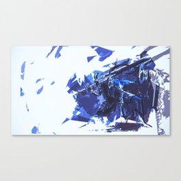 Artorias Canvas Print