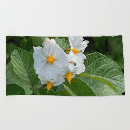 Potato Plant Flowers Beach Towel