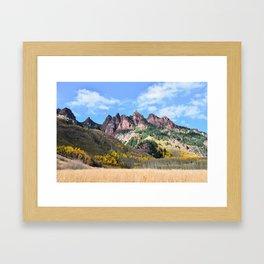 Aspens in Autumn  Framed Art Print