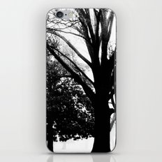 Park iPhone & iPod Skin
