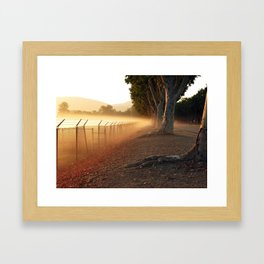 Summer Fog in the Breeze Framed Art Print