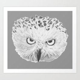 Snowy Owl Grey Art Print
