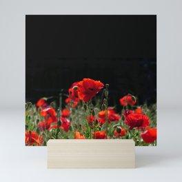 Red Poppies in bright sunlight Mini Art Print