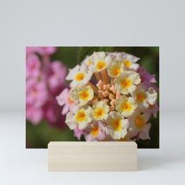 Series Flowers Mini Art Print