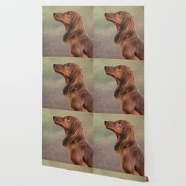 Dog breed long haired dachshund portrait oil painting Wallpaper